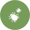 Reduces Indoor Dust Mites & Allergens